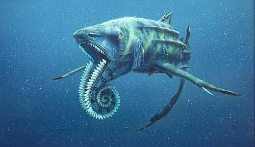 helicoprion23d.jpg