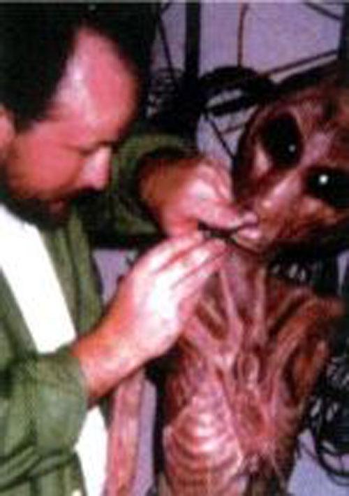 hoaxedhoax fotos de alienigenas