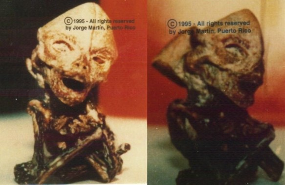 salinas monkey1 e1289754394830 fotos de alienigenas