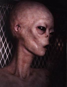 alien35