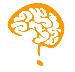 cerebroca geral ceticismo