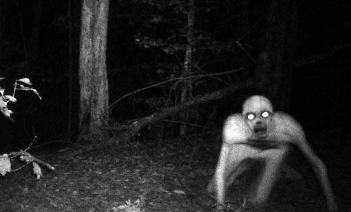 creature_berwick.jpg