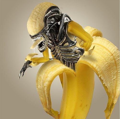 Banana Alien 62 ufologia fortianismo destaques