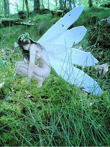 cottingley fairy images hun fortianismo ceticismo