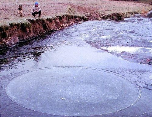 icecircledasf